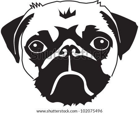 head of a pug   vector