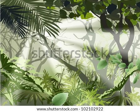 tropical jungle bush  tropical