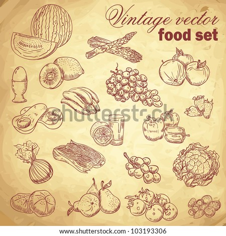 vintage hand drawn food set