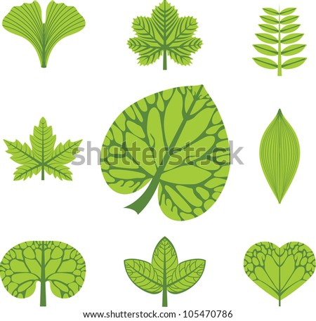vector icons of leaves