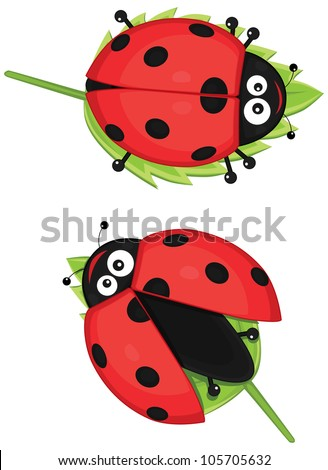 cute ladybug vector illustration