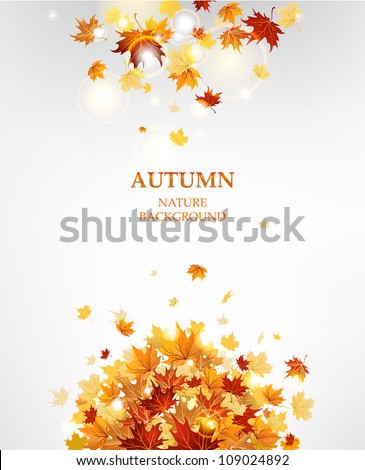 autumn leaves background with