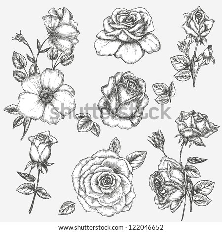 flower set vintage rose