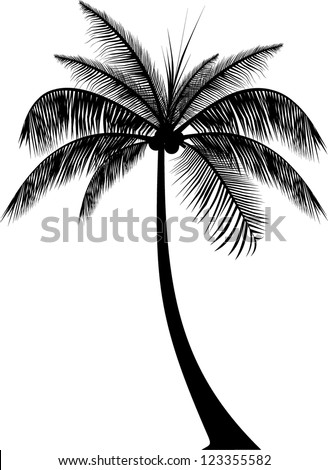 realistic palm tree silhouette