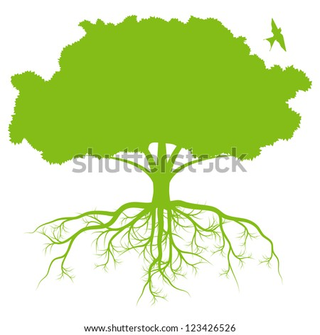 tree with roots background