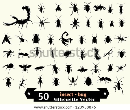 insect vector silhouette