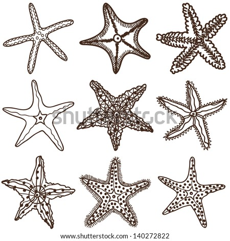 starfishes vector set