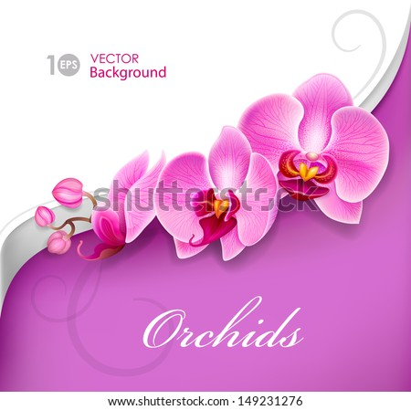 flower orchid vector eps 10
