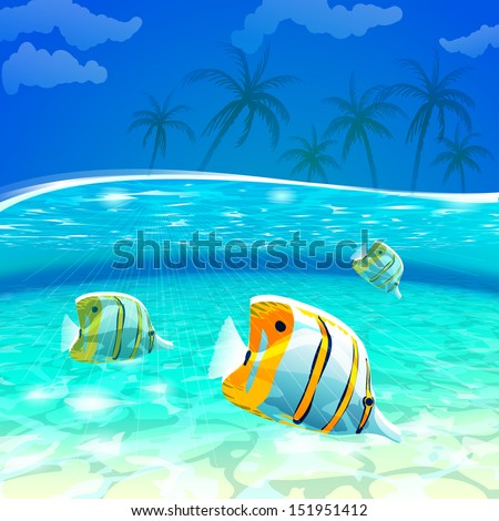 tropical underwater view