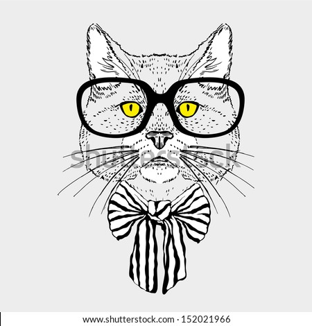 fashion portrait of hipster cat