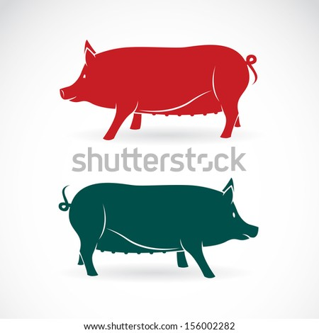 vector image of an pig on white