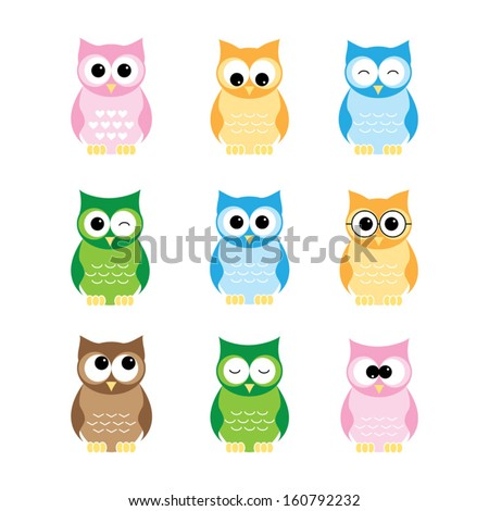 set of owls on white background