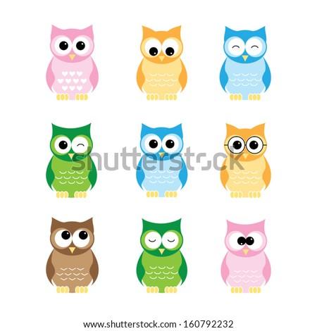 set of owls on white background