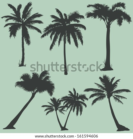vector set of  palms