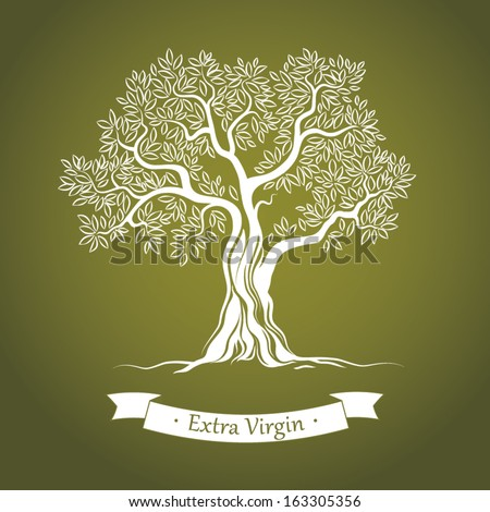 olive tree olive oil vector