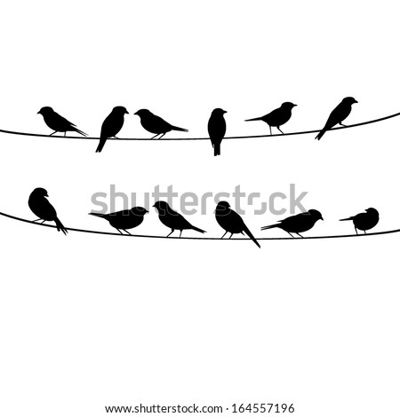 Download Bird Silhouette Wallpaper 1920x1080 | Wallpoper ...