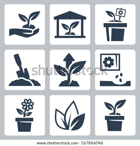 vector plant growing icons set