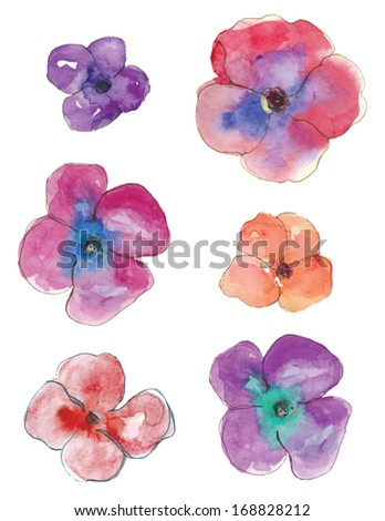 vector watercolor pansy flowers