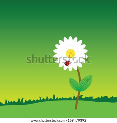 flower with ladybug in the