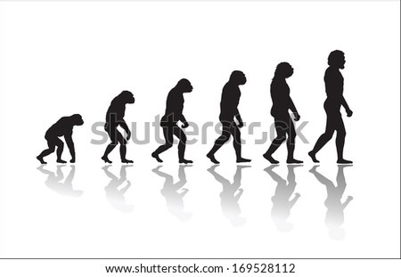 evolution of human high