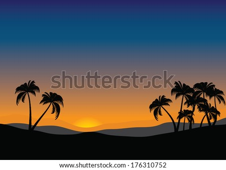 landscape with palm at sunset