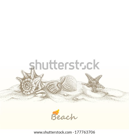 summer beach with seashells and