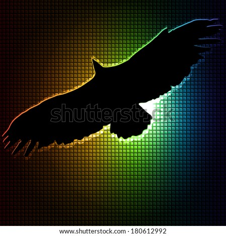 colorful bird silhouettes