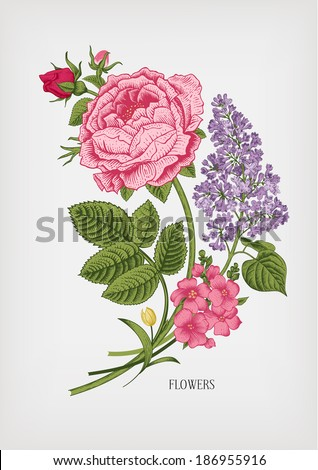 vintage card with floral drawn