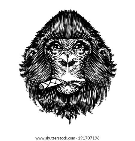 monkey vector   t shirt