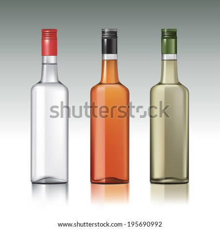 set of vodka bottlesvector
