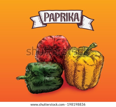 fresh paprika isolated on