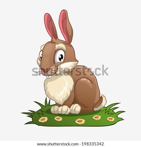 bunny on the grass  vector