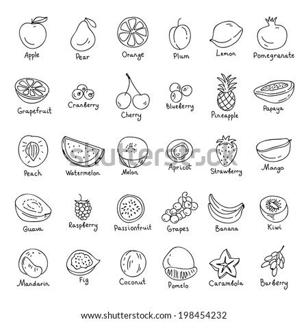 vector set of hand drawn fruit