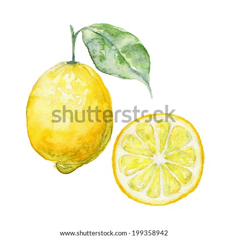 vector background fresh limon
