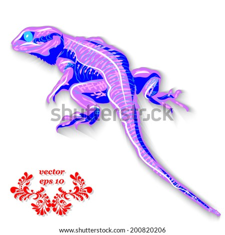 violet lizard dragon on a white
