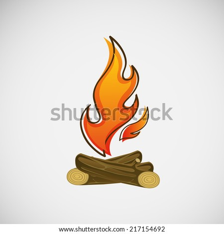 fire  burning on the wood