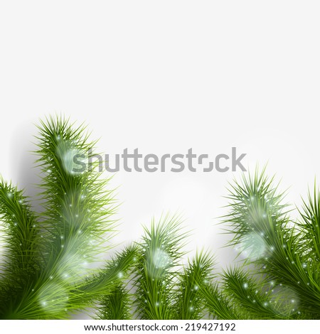 green christmas tree branch