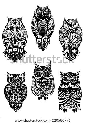 isolated owl birds in tribal