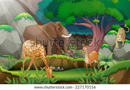 illustration of animals in the