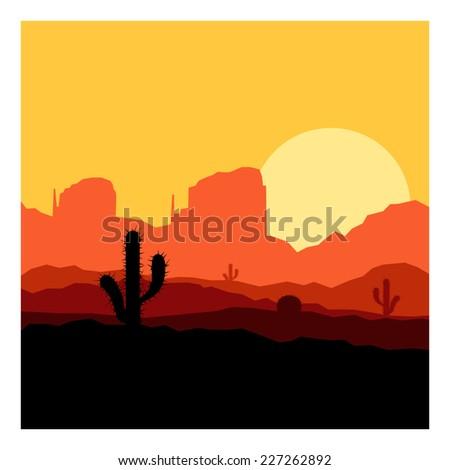cactus plants in desert sunset