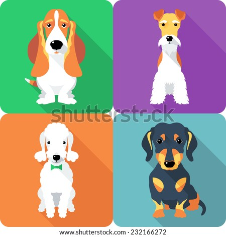 vector set dogs sitting icon