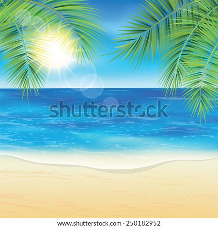 sand beach and the palm