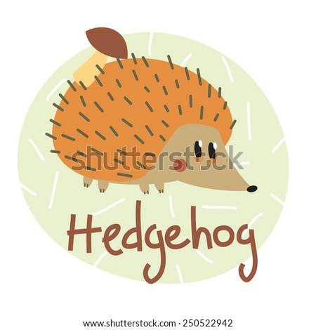 hedgehog colorful illustration