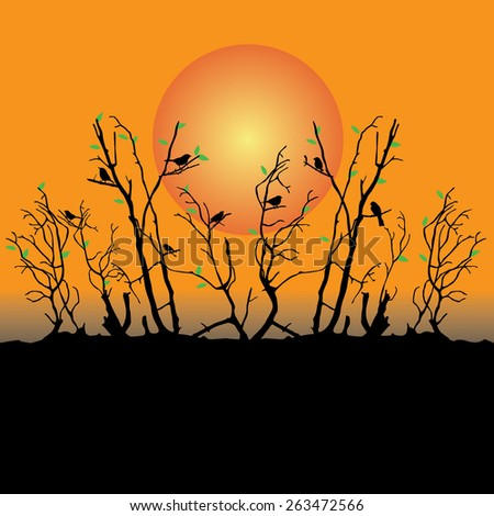 vector sunset tropical birds