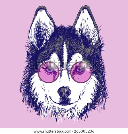dog in round pink glasses
