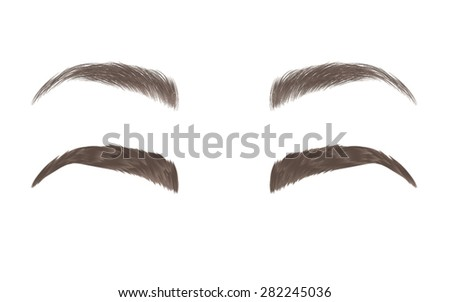 vector eyebrows  realistic and