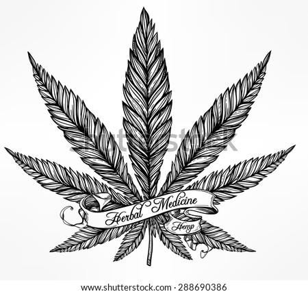 hemp cannabis leaf in vintage