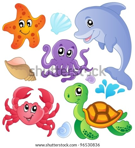 sea fishes and animals