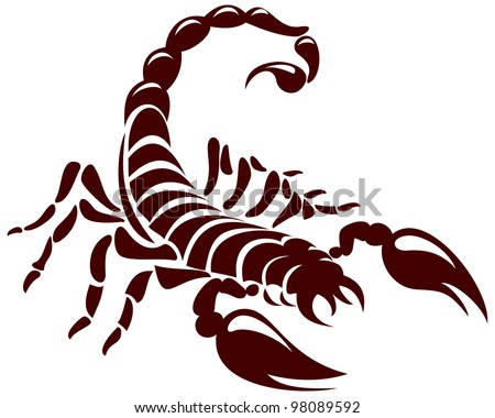 scorpion  vector image for the