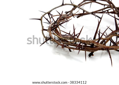 A crown of thorns on a white background - stock photo